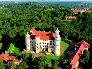 Zamek wWiśniczu